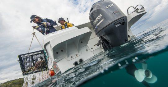 F130 båtmotor i vattnet